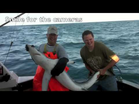 Blue Shark Fishing Charters 2012
