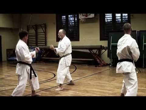 Kumite Training With Sensei Gyula Büki, 7th Dan Shotokan Karate video