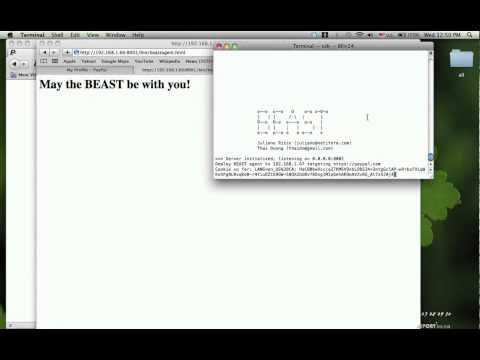 BEAST - зверский угон SSL-кукисов