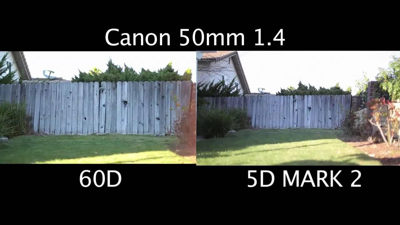 5d Vs 60d Sensor Comparison Youtube
