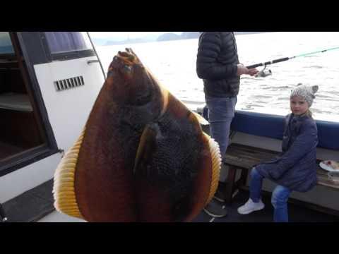 рыбалка на палтуса на камчатке тур