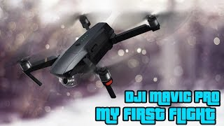 DJI Mavic Pro - My really first flight