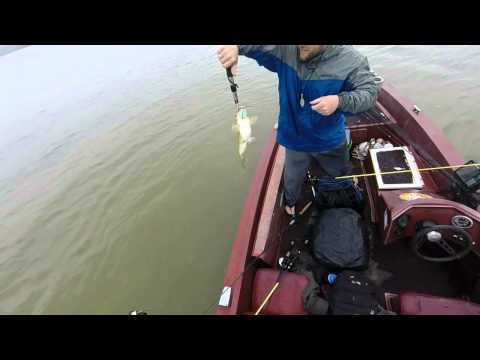 Bass Fishing Lake Allatoona - Mid April