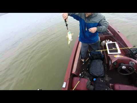 Bass Fishing Lake Allatoona - Mid April