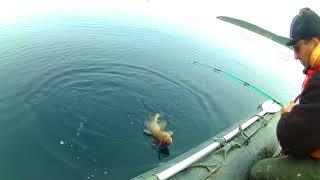 рыбалка в южносахалинском