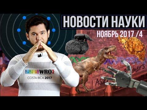 """Яйца русских динозавров, нервные роботопротезы и """"починка"""" генов в человеке: новости на QWERTY."""