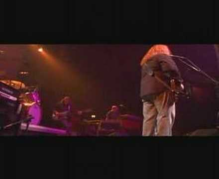 Gov't Mule - Brand New Angel