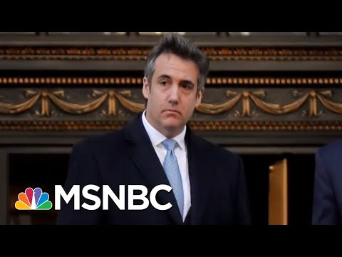 Michael Cohen's Criminal Defense: My Crimes Not As Bad As DMX's | The Beat With Ari Melber | MSNBC
