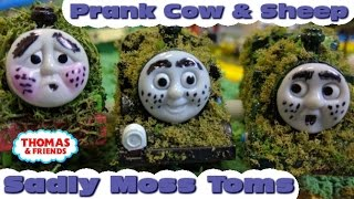 "Thomas and friends ""Sadly Moss Tom 