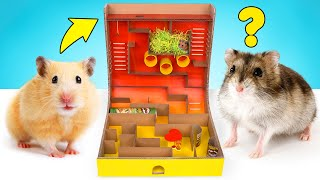 DIY Hamster Maze With Pringles Can And Spinner Obstacles