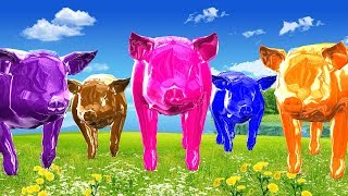 Learning With Colourful Pig Nursery Rhymes Song || 3d Animated Rhymes For Kids Top Rhymes