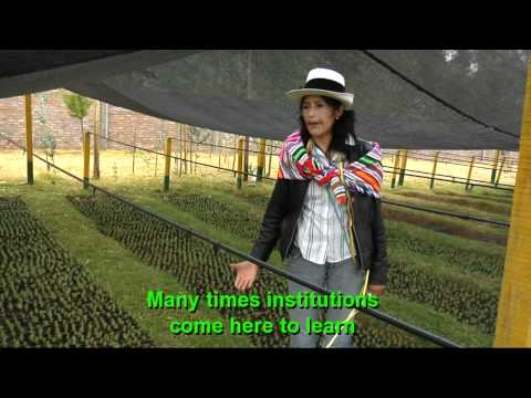 peru-strategies-for-adaptation-and-innovation-of-agriculture-against-climate-change.html