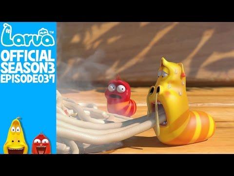 [Official] Cup noodle - Larva Season 3 Episode 37