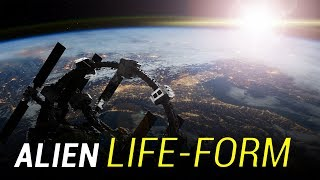 How would we react to finding alien life?