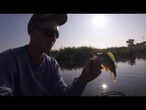 Щучья чума, или первая рыбалка осени 2017