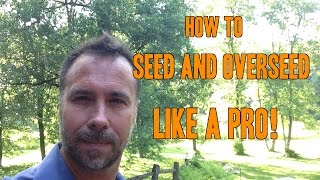 How to Plant Grass Seed and Overseed like a PRO