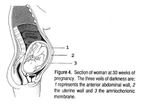 Embryology In The Qur'an: The Three Veils Of Darkness Explained video