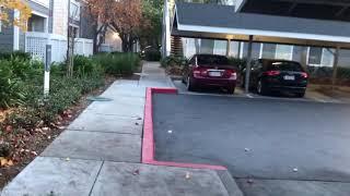 900 Pepper Tree 9206 Entrance Video