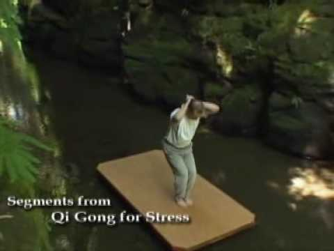 Qi Gong for S