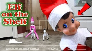 Purple & Pink Elf on the Shelf - Caught Moving on Real Camera with Red Elf! Day 19