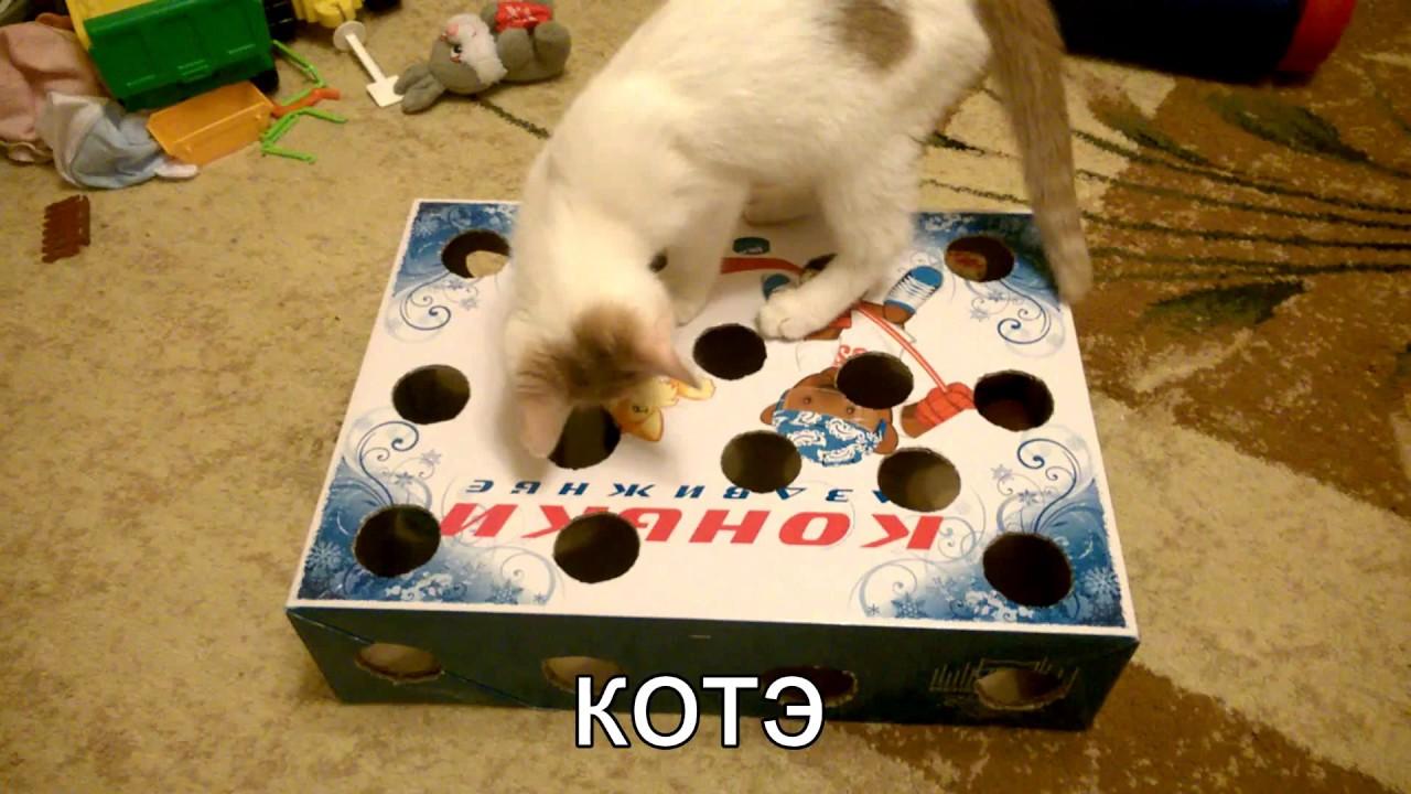 Как сделать игрушки для котёнка своими руками дома 63