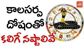 కాలసర్ప దోషంతో కలిగే నష్టాలివే..!  | Disadvantages With Kala Sarpa Dosha | YOYO TV Channel