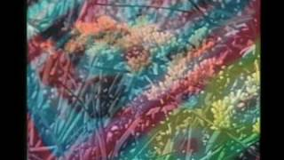 Watch Animal Collective Daily Routine video