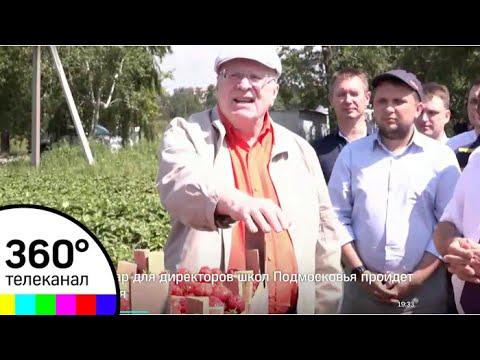 Жириновский весь день собирал клубнику в совхозе имени Ленина