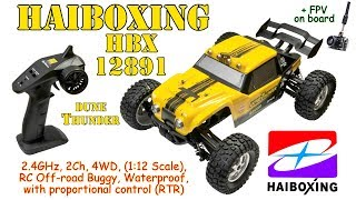 HBX 12891 2.4GHz, 2Ch, 4WD, 1:12 Scale, RC Off-road Buggy, Waterproof, proportional control (RTR)