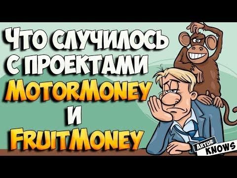 Что произошло с Motor money и Fruit Money. Что делать дальше