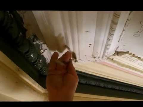 Plastering Victorian Cornice Repairs Section Replacement