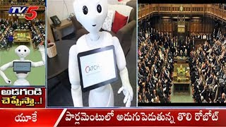 మనుషుల ఎమోషన్స్ ను గుర్తించే రోబోట్ | A ROBOT Is To Appear In Parliament As The First Non-Human |TV5