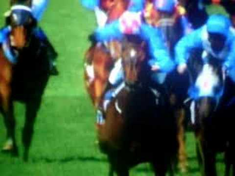 Makybe Diva - tribute to a champion Video