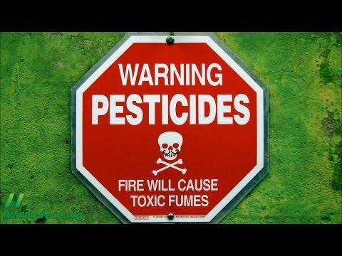 Порядок обращения с пестицидами и агрохиииками