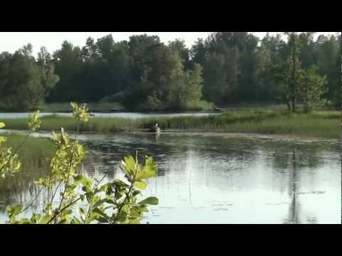 Чичерина Юлия - Тихая река