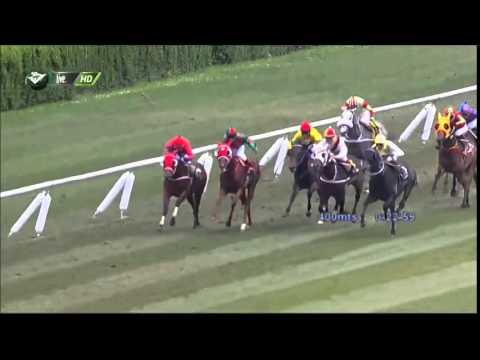 Vidéo de la course PMU PREMIO LA ANACONDA