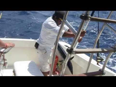 Puerto Aventuras (Riviera Maya) Mexico Baraccuda Fishing Captain Ricks Fleet