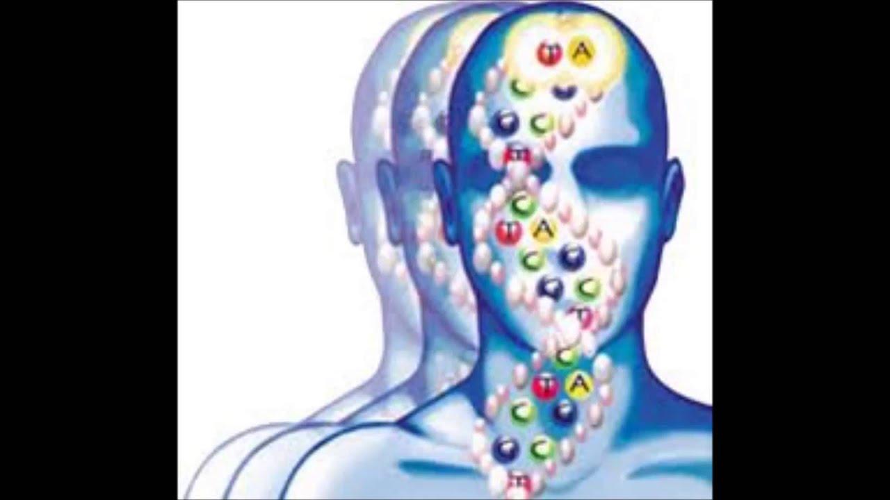 Biologia Humana Wallpaper ¿que es la Biologia Humana y
