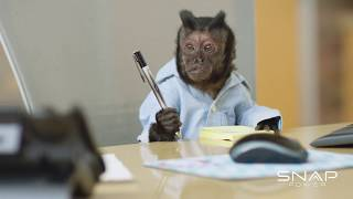 'Mah Main Man'-- SnapPower™: Can a Monkey Be a Good Intern?