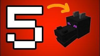 5 ĐIỀU LẠ KỲ VỀ ĐẦU RỒNG ENDER TRONG MINECRAFT POCKET EDITION | Minecraft PE 1.1.1.0
