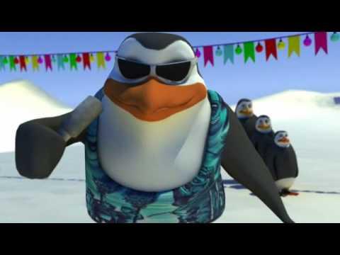 Schiffie & Co - Pinguïndans