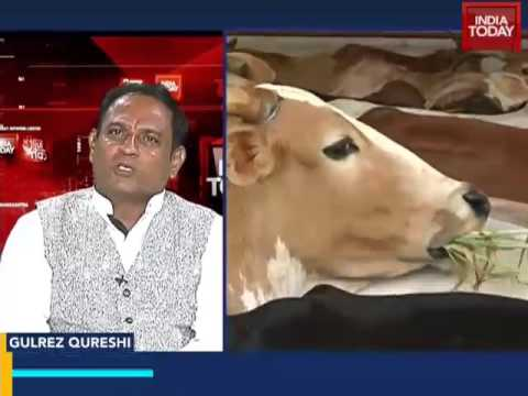 After beef ban, a ban on beef export?