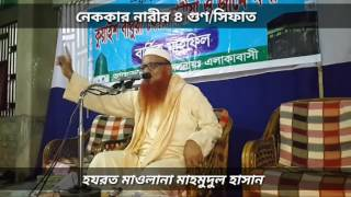Maolana Mahmudul Hasan