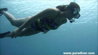 Freediving Clinic_ Beginners (Pure Diver)