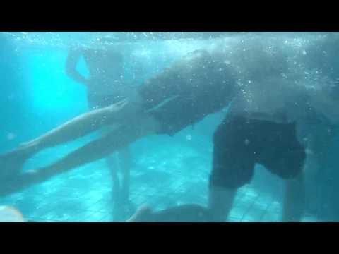 Jongens Stoeien Onderwater video