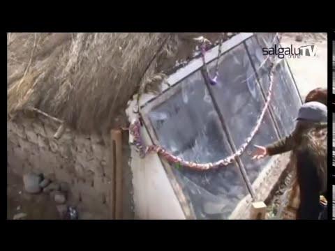 Salgalú TV Online - Informe Friaje Perú