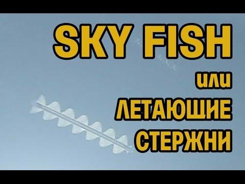 Фанские горы. Послесловие. SKYFISH или Летающие стержни.