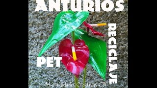 Diy Flor Anturio de PET Botella de plástico anthurium flower pet recycling