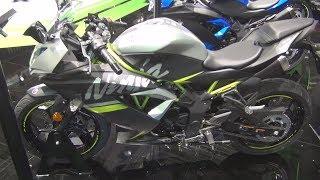 Kawasaki Ninja 125 Flat Spark Black / Matt Fusion Silver (2019) Exterior and Interio