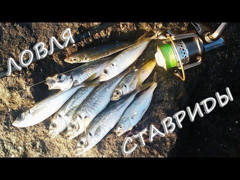 джиг для ловли на черном море